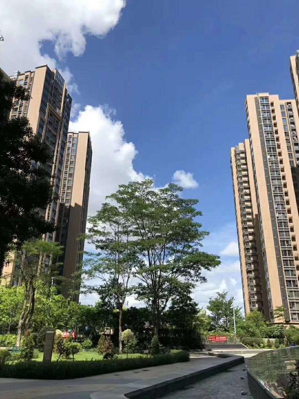 【深圳沙井小產權房】共有產權房和集體產權房區別